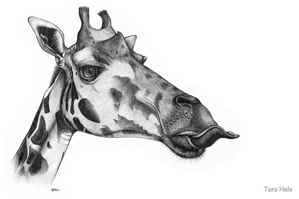 GIRAFFE by Tara Hale