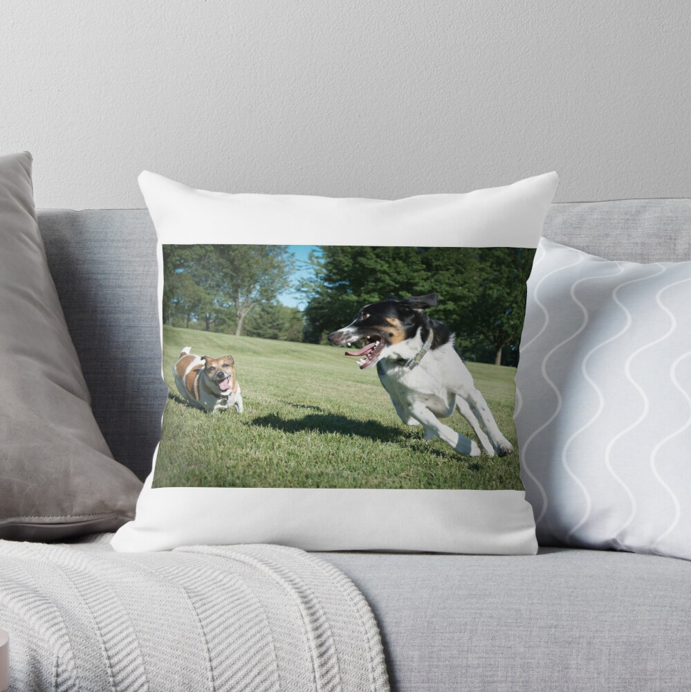 Playing chase Throw Pillow