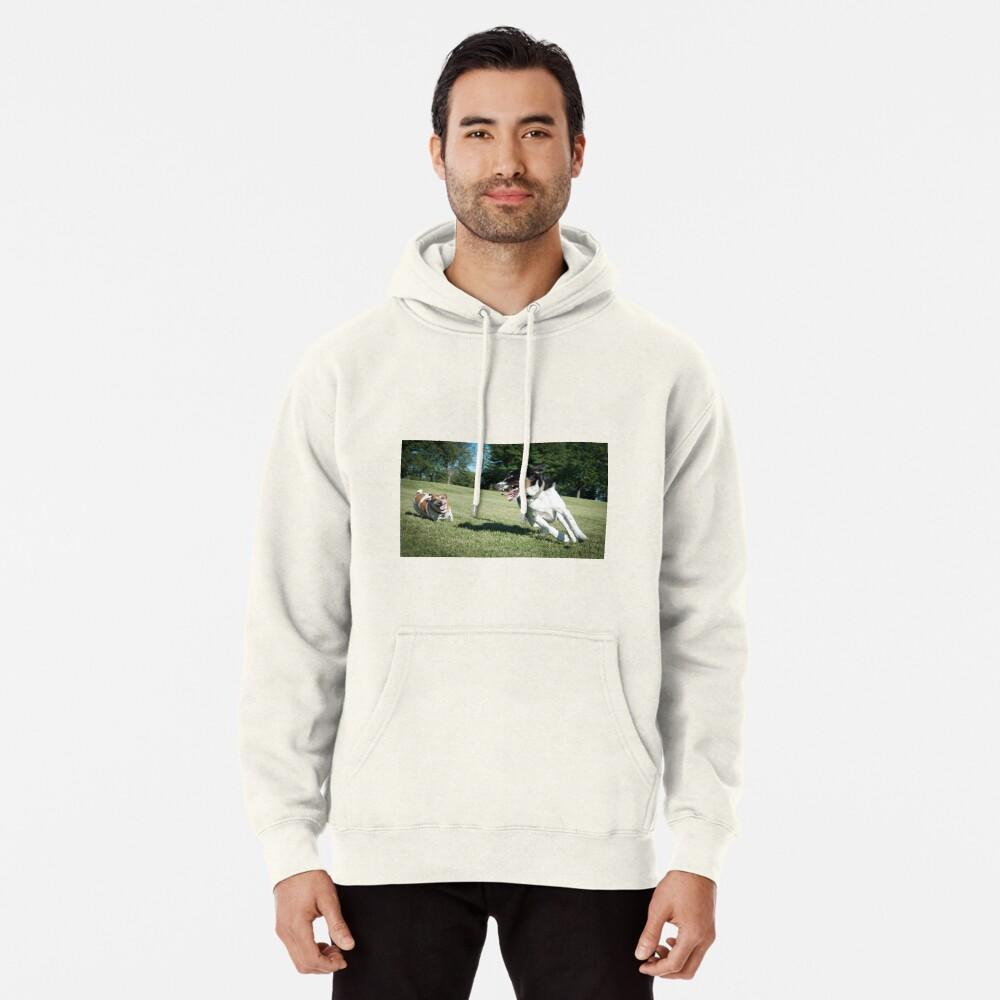 Playing chase Pullover Hoodie