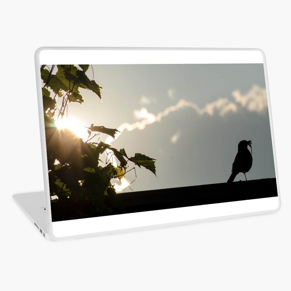 Early bird gets the worm Laptop Skin
