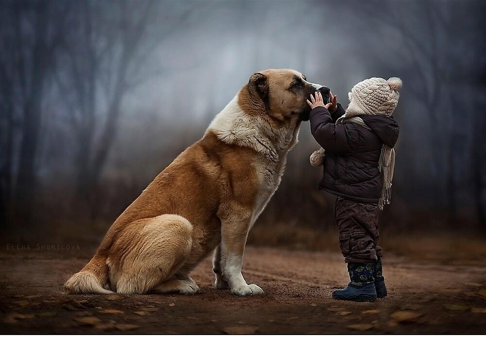 Dog  by santisimo