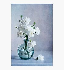 Dainty Bouquet Photographic Print