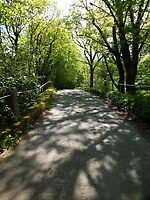 Glynn Valley Lane by Yampimon