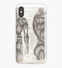 Human Anatomy 1 iPhone Case/Skin