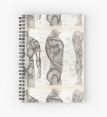 Human Anatomy 1 Spiral Notebook