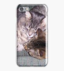 Best Buddies at nap time iPhone Case/Skin