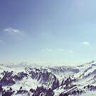 The alps 2 von nurmut