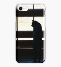 Window Cat iPhone Case/Skin