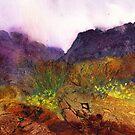Wild Daffodils by Jacki Stokes