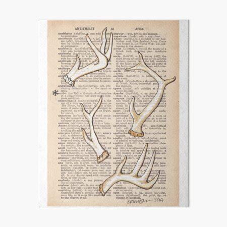 Adorable Antlers Art Board Print