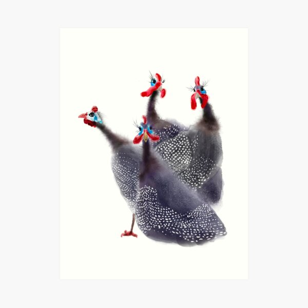 Gaggle of four Guinea fowl birds Art Print