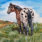 Appaloosa Small Painting by WildestArt