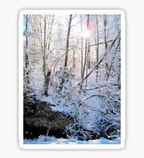 light through the winter woods Sticker