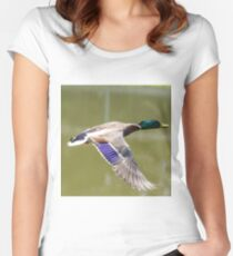Duck in flight Fitted Scoop T-Shirt