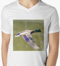 Duck in flight V-Neck T-Shirt