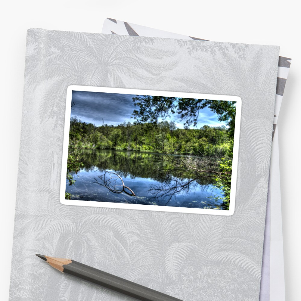 Reflected trees Sticker
