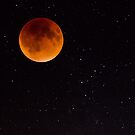 Blood moon by Dave Riganelli