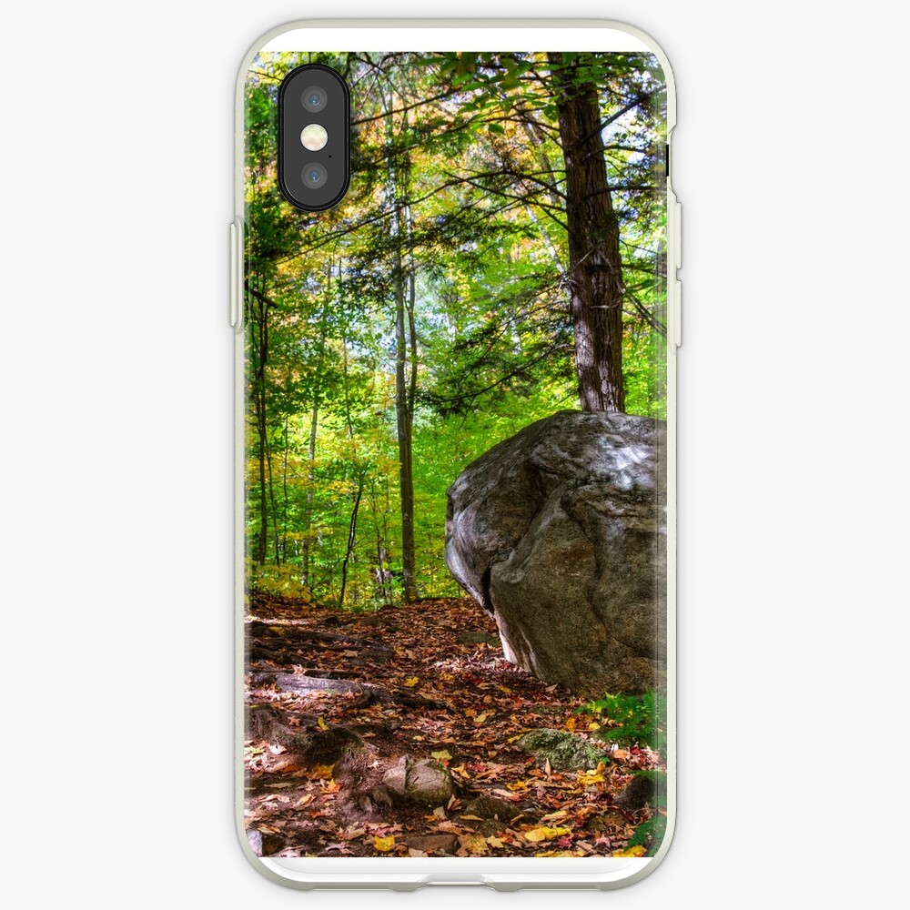 Boulder in the woods iPhone Case & Cover