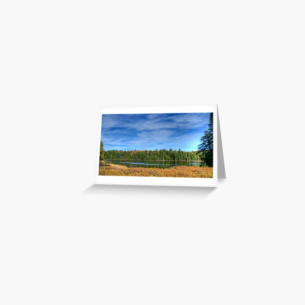 Forest under blue sky Greeting Card