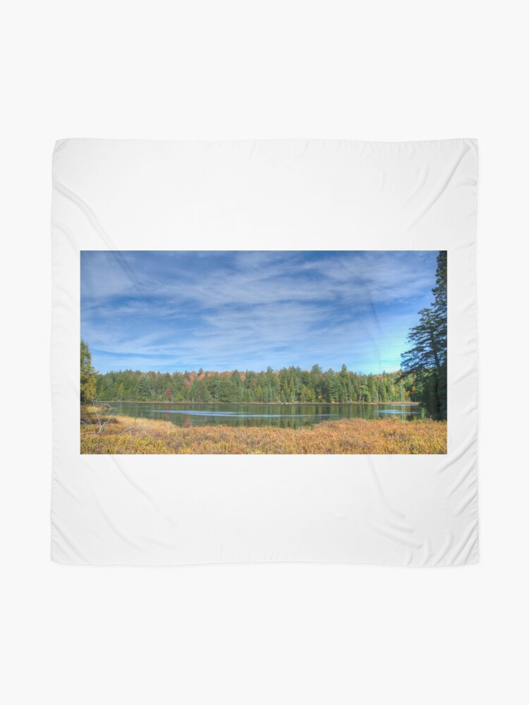 Alternate view of Forest under blue sky Scarf