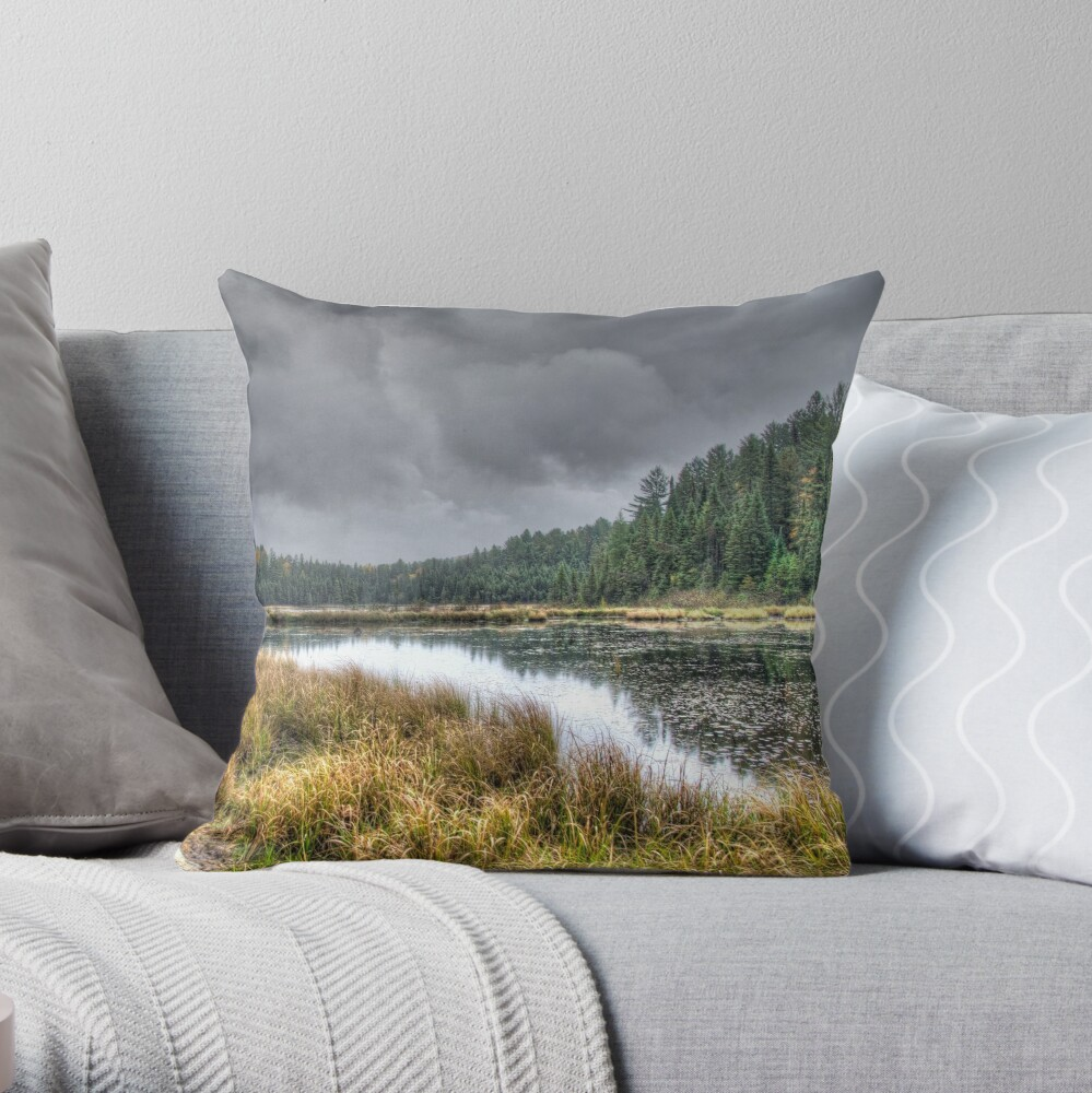 Clouds over the wetlands Throw Pillow