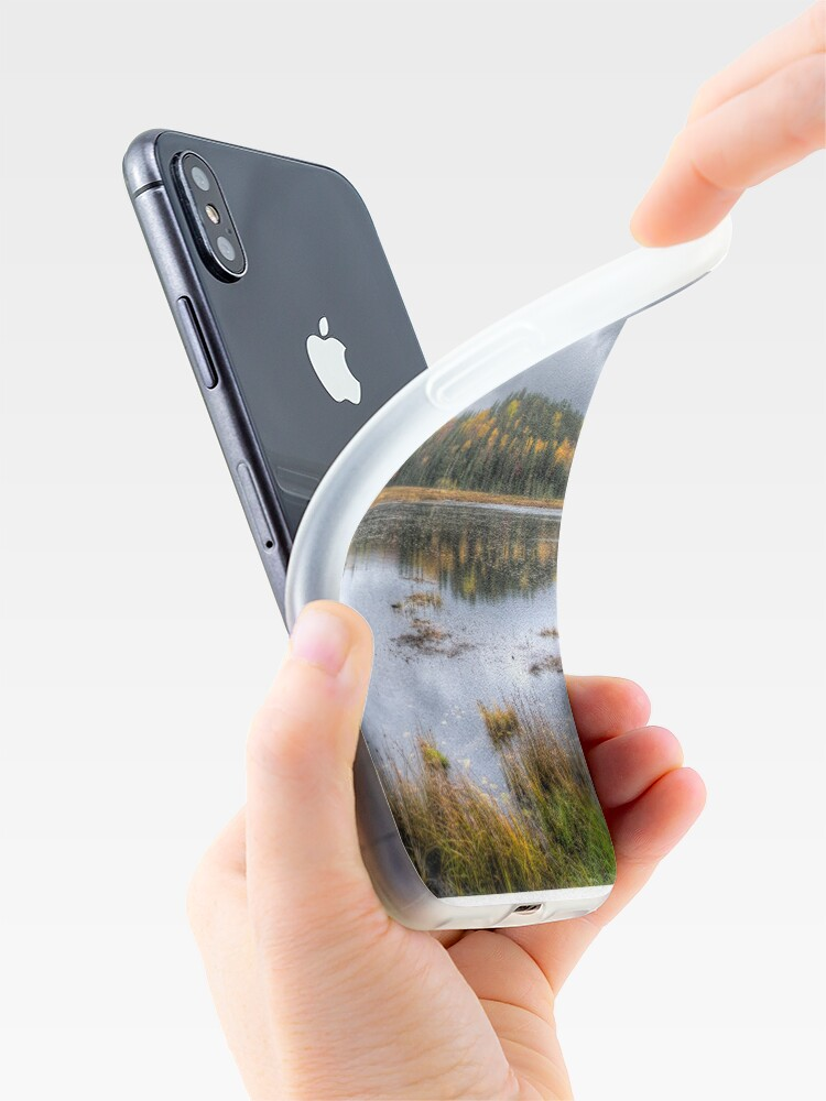 Alternate view of Overcast day over the pond iPhone Case & Cover