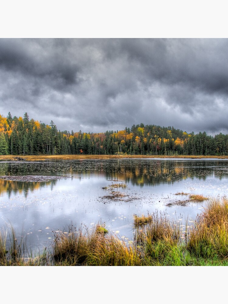 Overcast day over the pond by daveriganelli