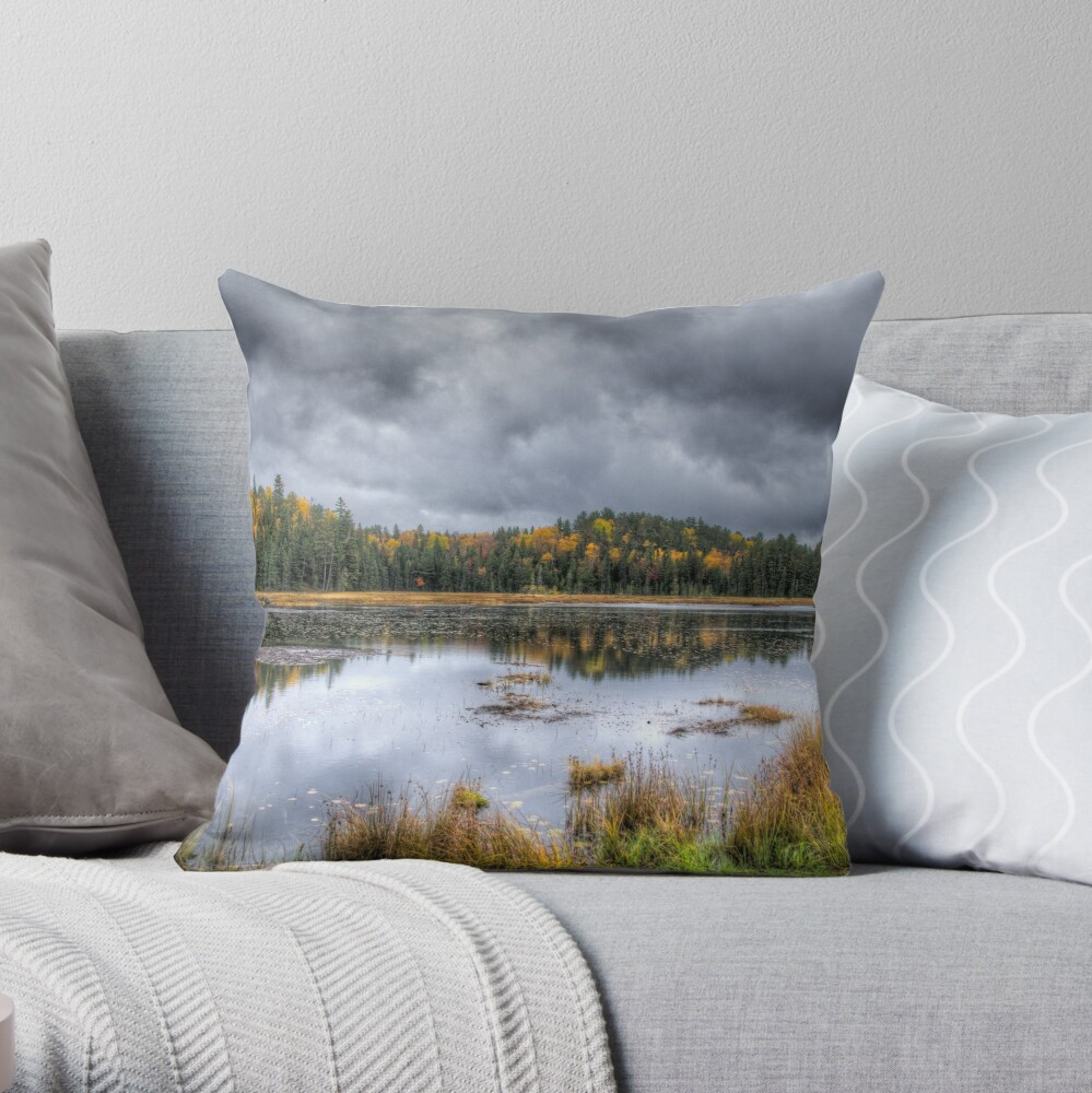 Overcast day over the pond Throw Pillow