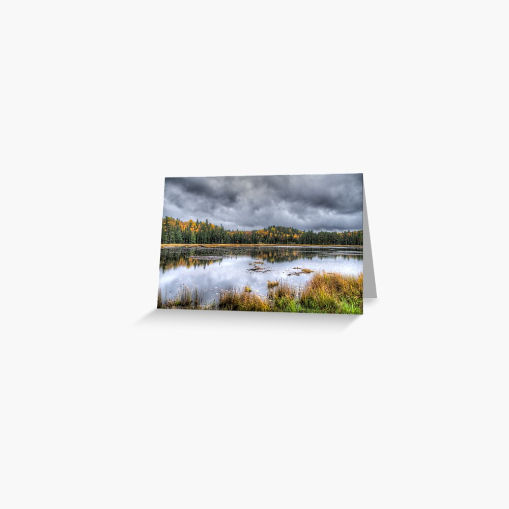 Overcast day over the pond Greeting Card