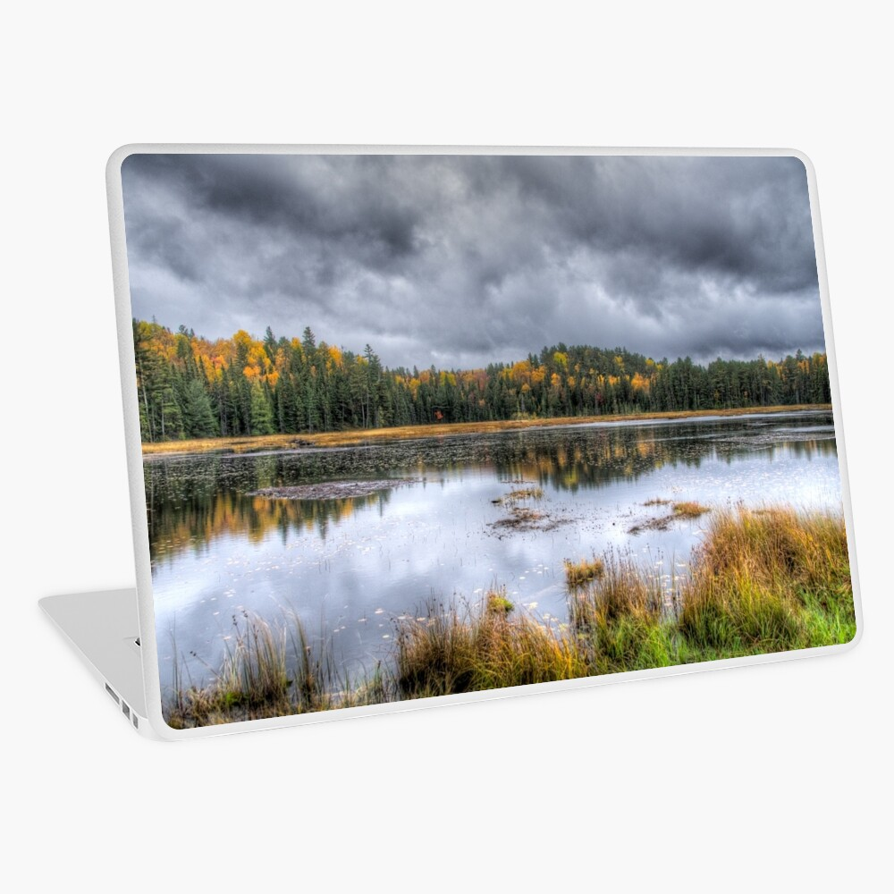 Overcast day over the pond Laptop Skin
