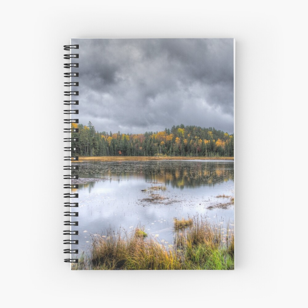 Overcast day over the pond Spiral Notebook