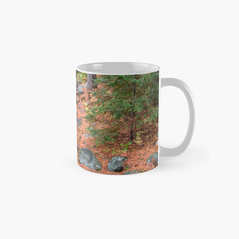 Rocky path through the pine forest Mug