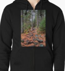 Rocky path through the pine forest Zipped Hoodie