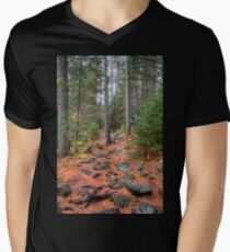 Rocky path through the pine forest V-Neck T-Shirt