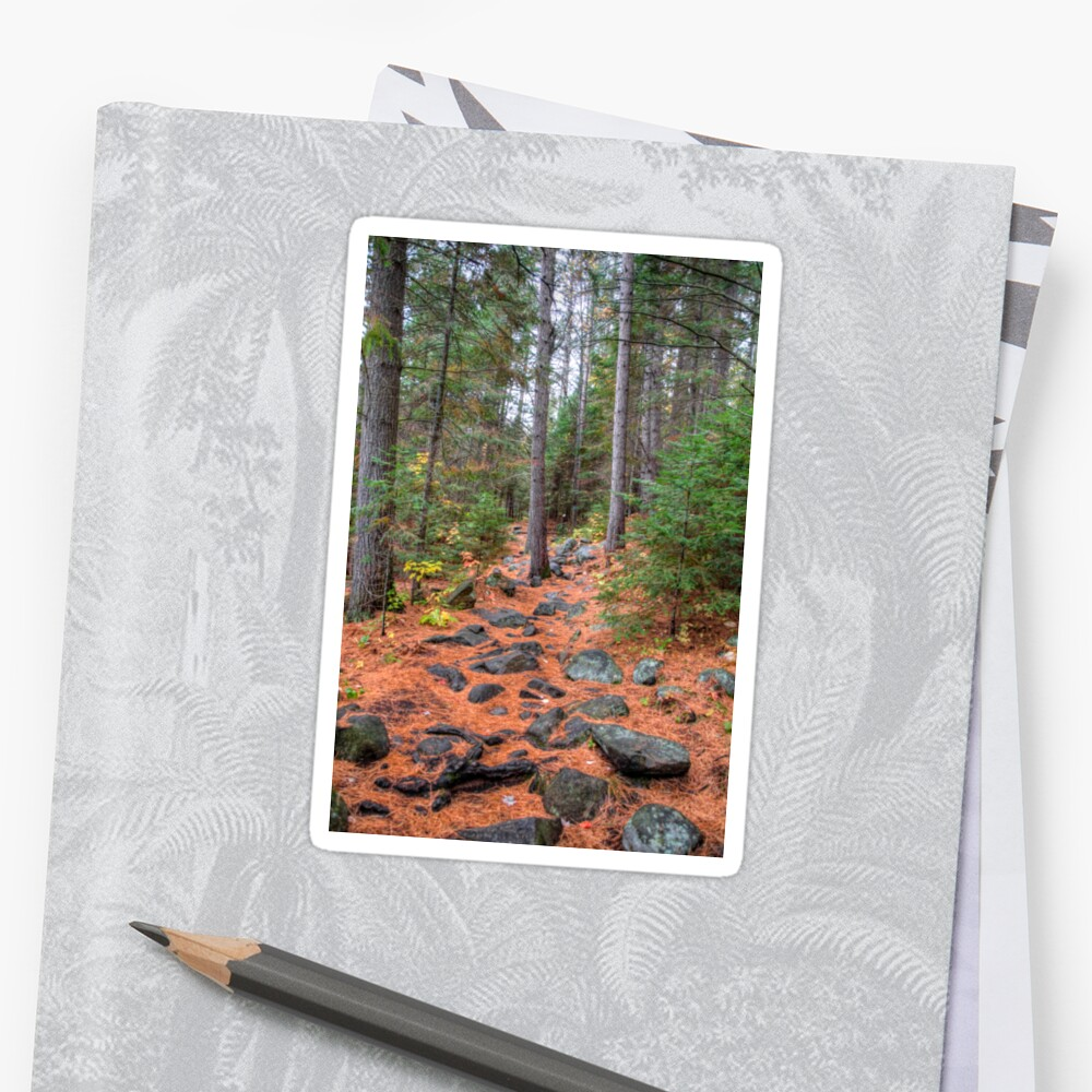 Rocky path through the pine forest Sticker
