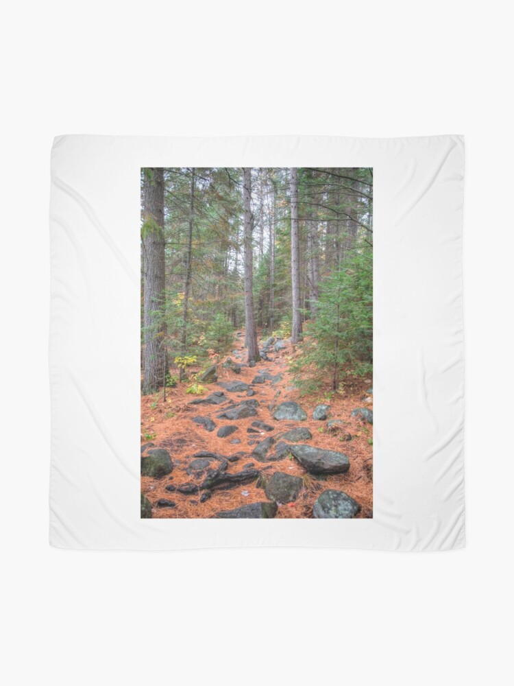 Alternate view of Rocky path through the pine forest Scarf