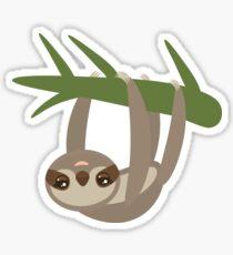 Cute sloth upside down Sticker