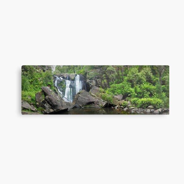 Stevensons Falls, Otways National Park, Victoria, Australia Metal Print