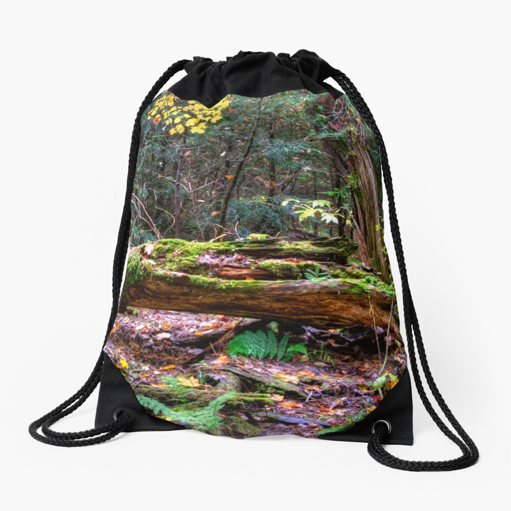 Fallen tree Drawstring Bag