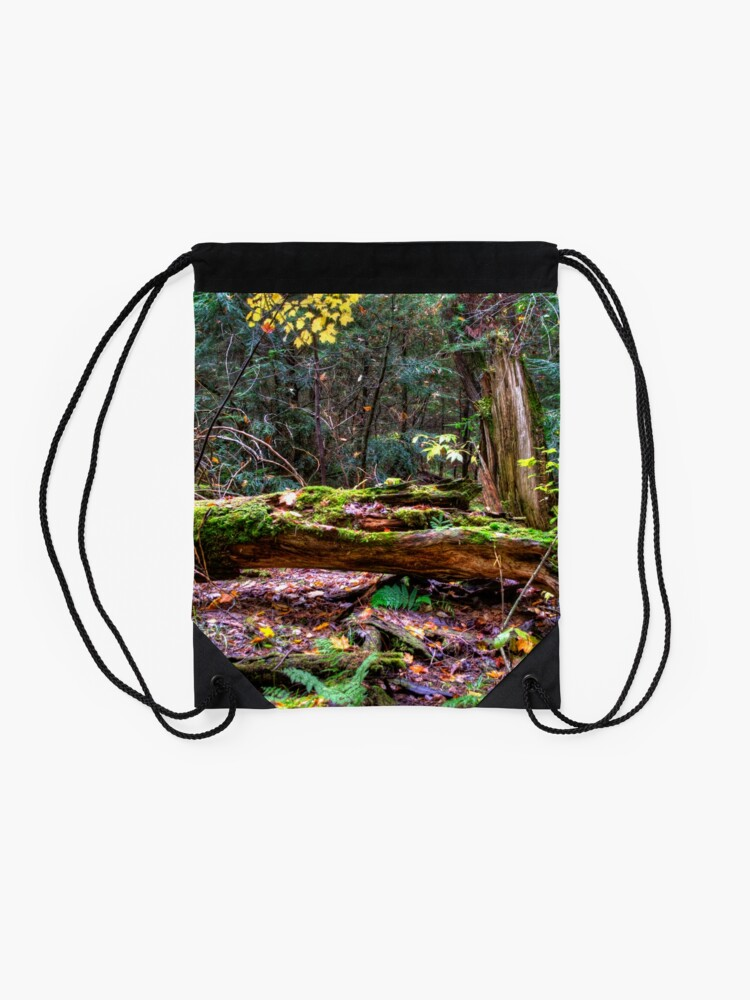 Alternate view of Fallen tree Drawstring Bag