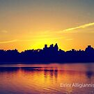 Central Park Sunset  by FroPhotos