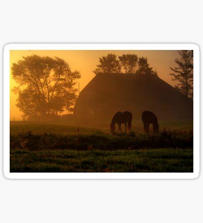 Horses in the Morning Light Sticker