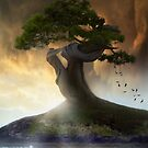 One,tree,island by Cliff Vestergaard