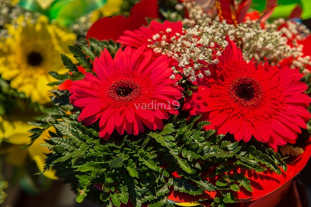 Estonia. Tallinn. Flowers. Gerberas. At the Market. by vadim19
