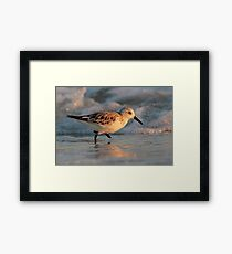 Dancing with the Surf Framed Print