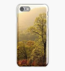 Dancing In The Spring Light iPhone Case/Skin