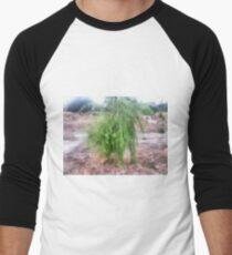 Willow Men's Baseball ¾ T-Shirt