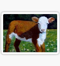 Hereford Beef Calf in Sunshine, Original: Farm Animal, Cows Sticker