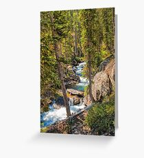 Teton Wonders Greeting Card