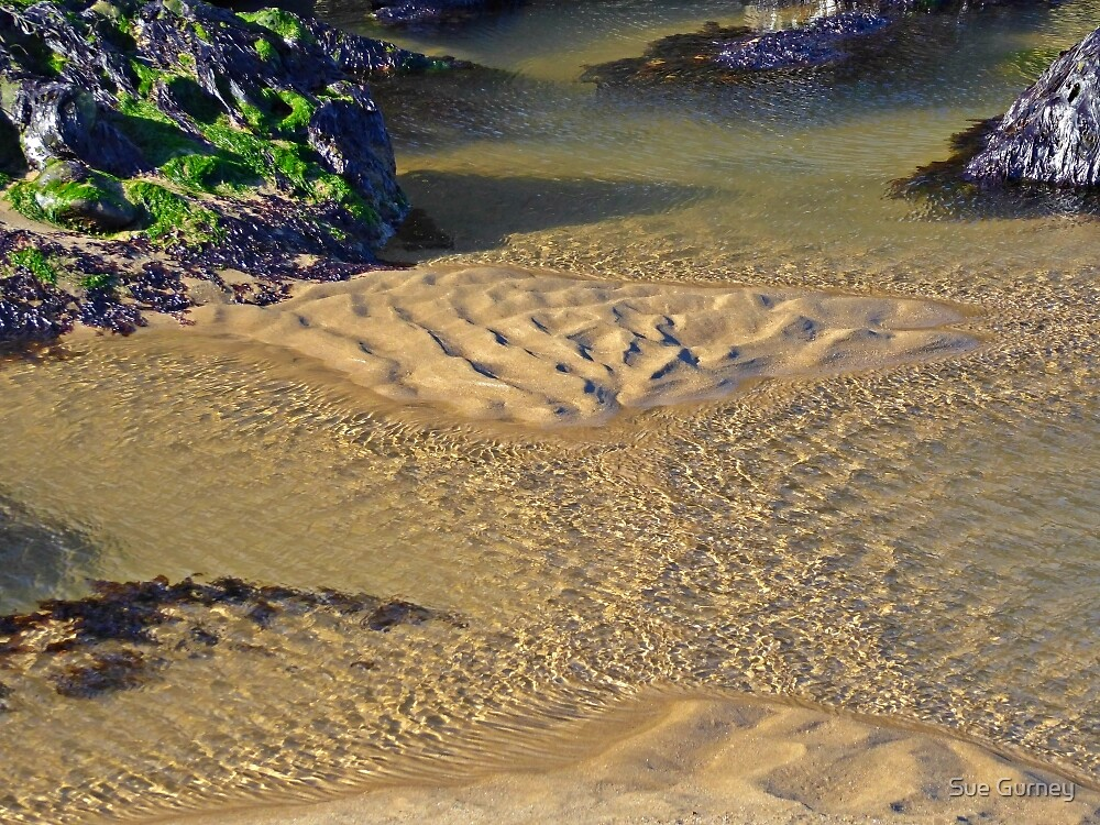 Coastal shapes and patterns by Sue Gurney